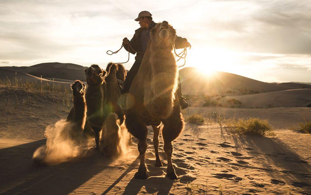 Followthetracks Mongolia photography travel tour across the Gobi desert and Central Mongolia