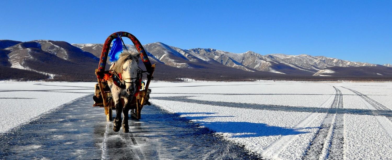 Ice & Horse