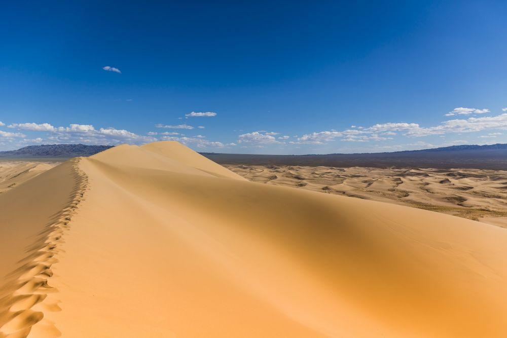 Sanddunen