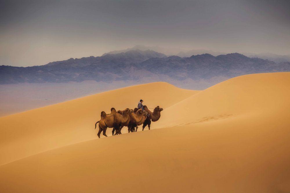 Liqui Moly Extreme Mongolia 4x4 roadtrip travel journey to camel riding on sand dunes