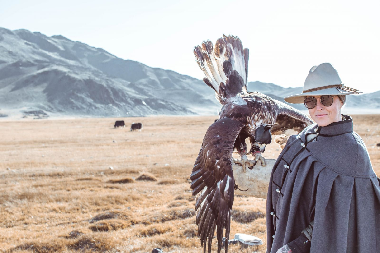 Learn to Hunt with Eagles