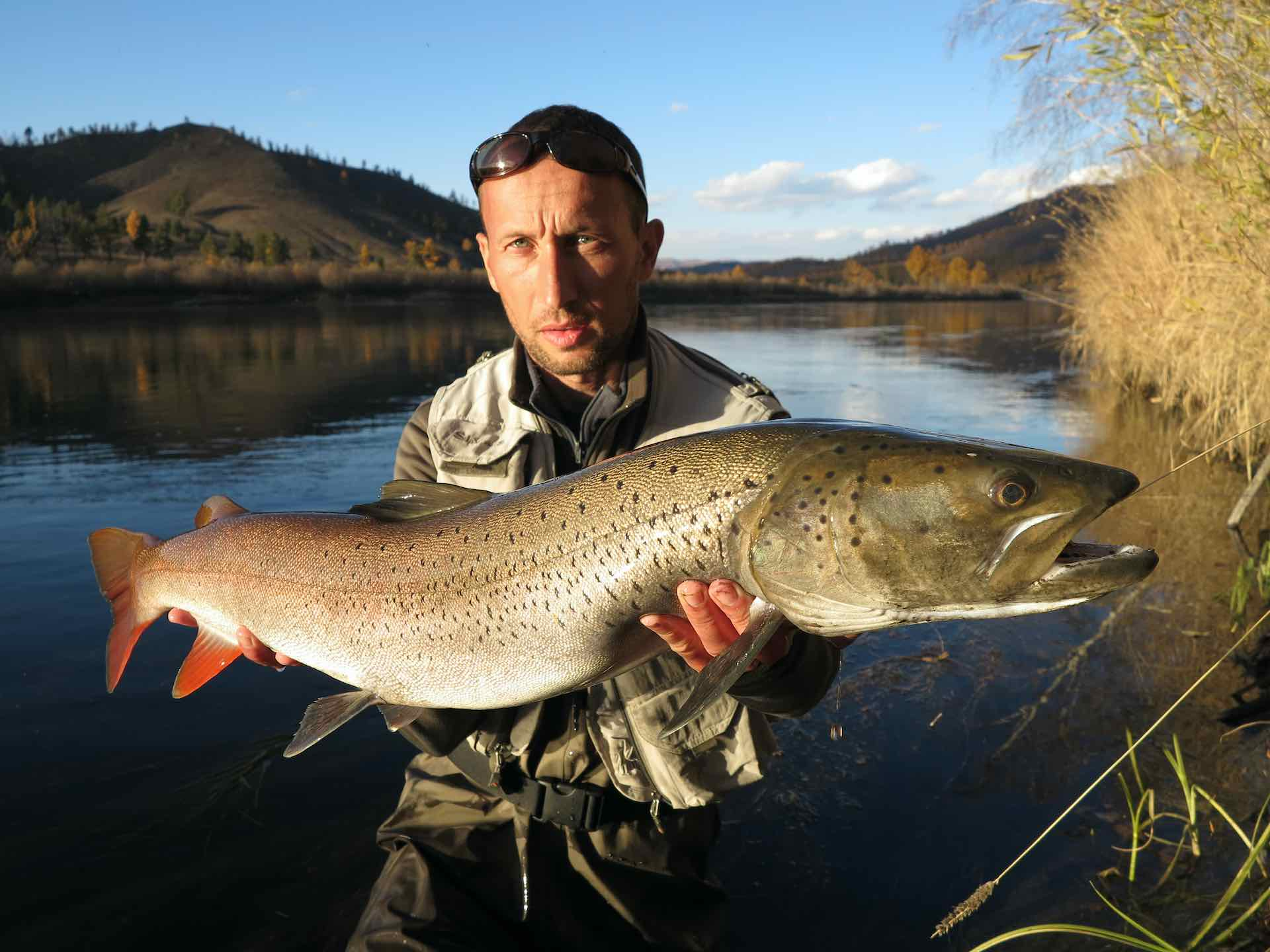 Taimen fishing in Mongolia