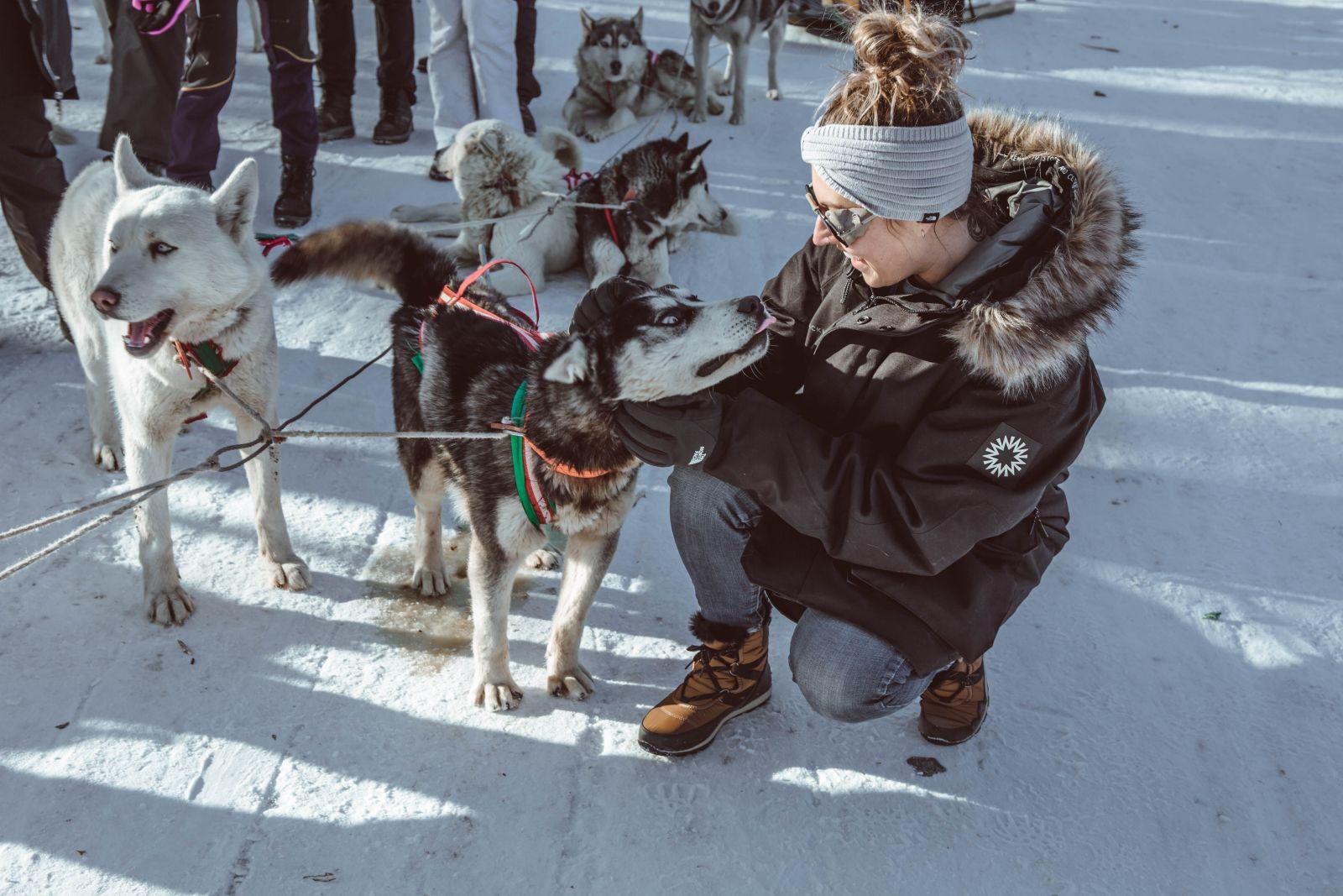 Husky Sledging in Terelj National Park