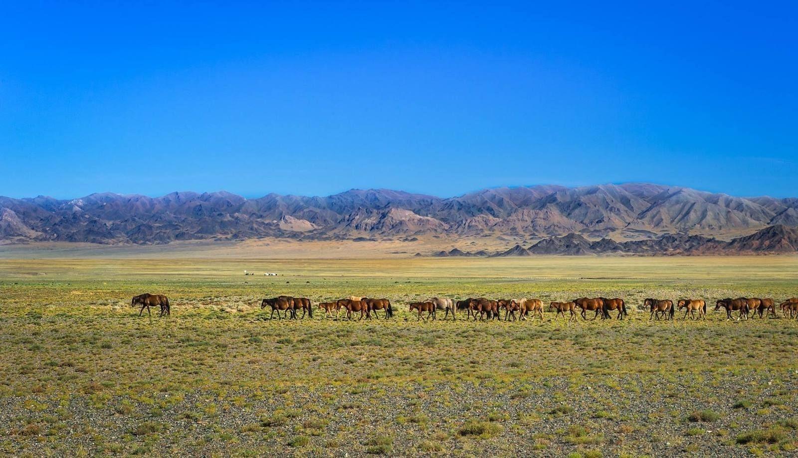 Khan Khukhii National Park
